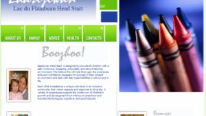 Zaasijiwan LDF HS-EHS website